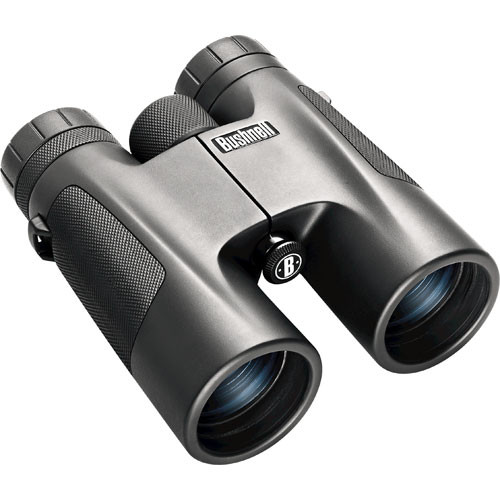 Bushnell Powerview 10x 42mm